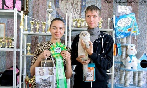 Breeders Natalie and Alexey Lesovskiy, Mouse Nightmare cattery owners